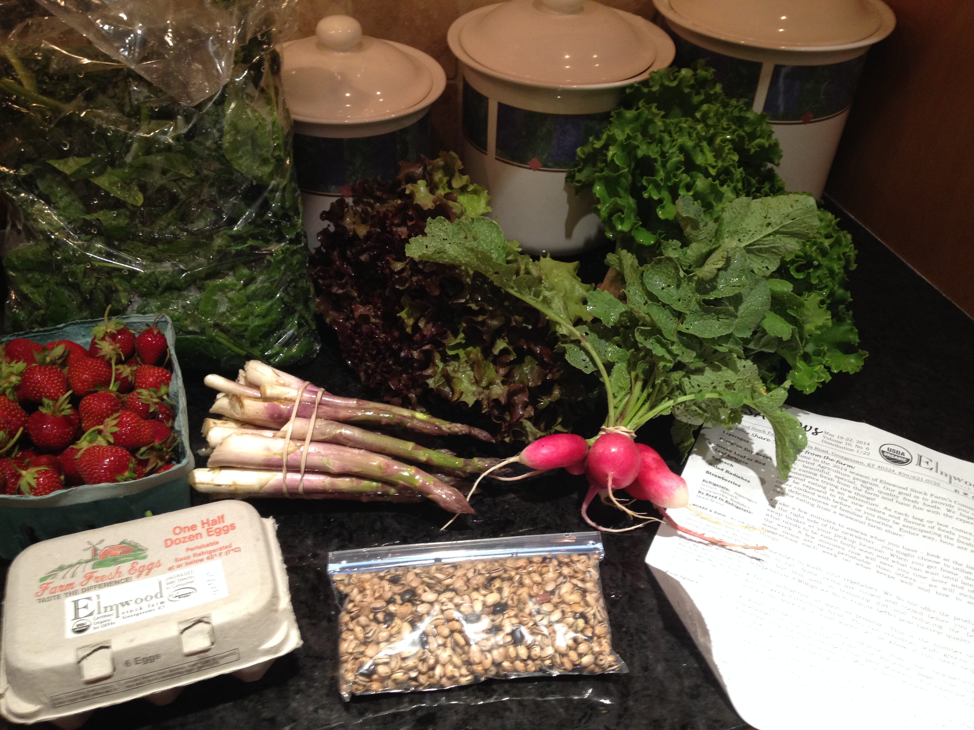 Summer 2014 CSA – Vegetable Box week 1