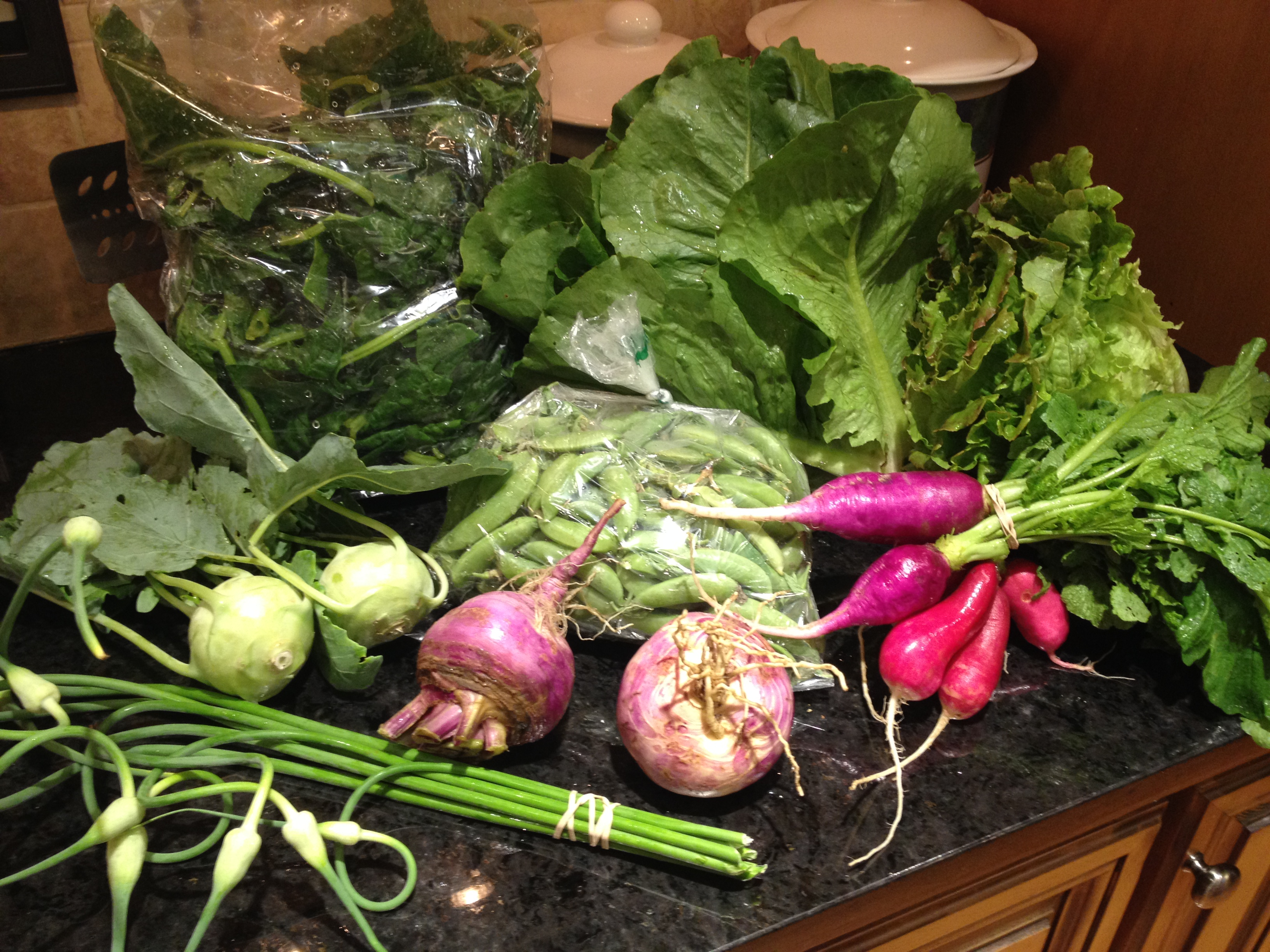 Summer 2014 CSA – Vegetable Box week 4