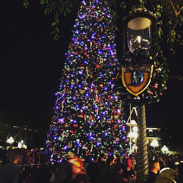 Christmas Decorations Disneyland New--year.info 2019